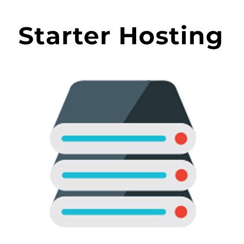 Starter Hosting plan